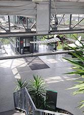 Glaselefant von innen - Maxi Gastro, die Gastronomie im Maxipark Hamm.